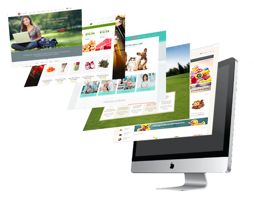 Penang Website Design web Design